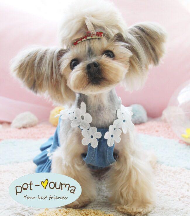Sサイズ 可愛い新品 ペット洋服 犬のワンピース フラワー フリル キャミワンピ 犬服 猫服 おしゃれ