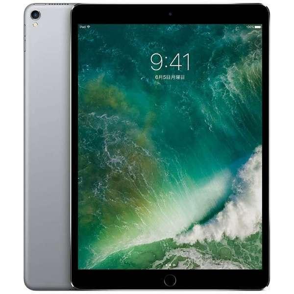 ★ APPLEストア購入 新品未開封 ★ iPad Pro 11インチ Wi-Fi 64GB MTXP/2JA シルバー アイパッドプロ アップル