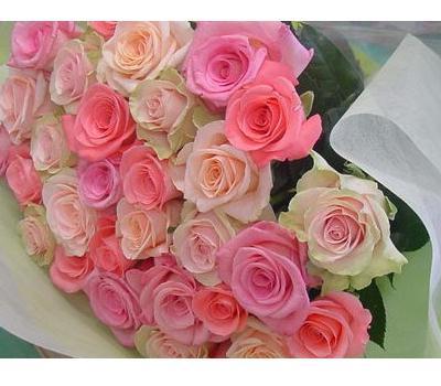 30本のバラ ラッピング付き 送料込み バラの季節到来大特価
