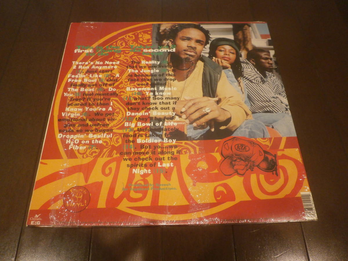 GUMBO / DROPPING SOULFUL H2O ON THE FIBER /LP/A FREE SOUL/ARRESTED DEVELOPMENT/フリーソウル _画像2