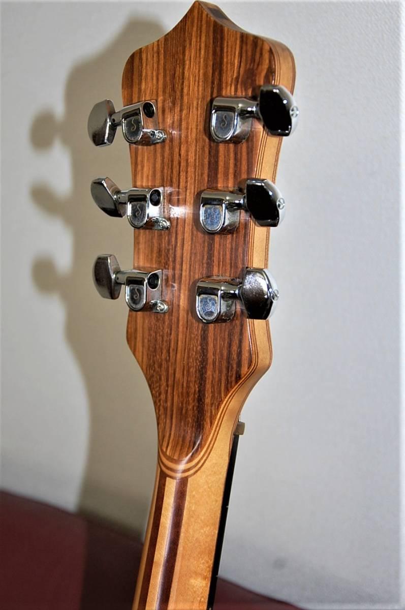 ☆ALRMBIC・アレンビック★DISTILLATE・ディスタレイトギター☆改造品★_画像8