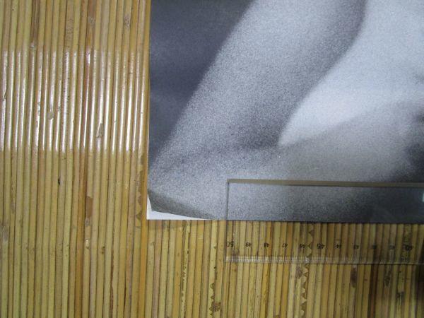 水沢アキ ◆ サントリー カレンダー 1982年 A2判 企業物 ノベルティ 表紙含め7枚揃 HAIG_画像2