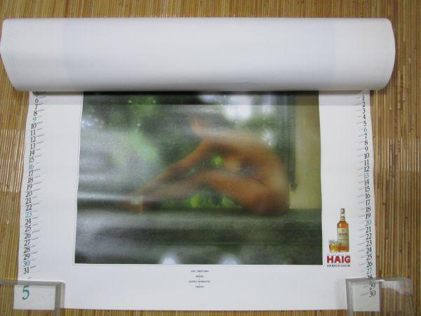 水沢アキ ◆ サントリー カレンダー 1982年 A2判 企業物 ノベルティ 表紙含め7枚揃 HAIG_画像6