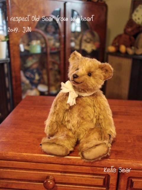 テディベア☆KEITA BEAR いつも一緒♪アンティーク風クラシックオールドベア♪…ボロクタちゃん_画像4