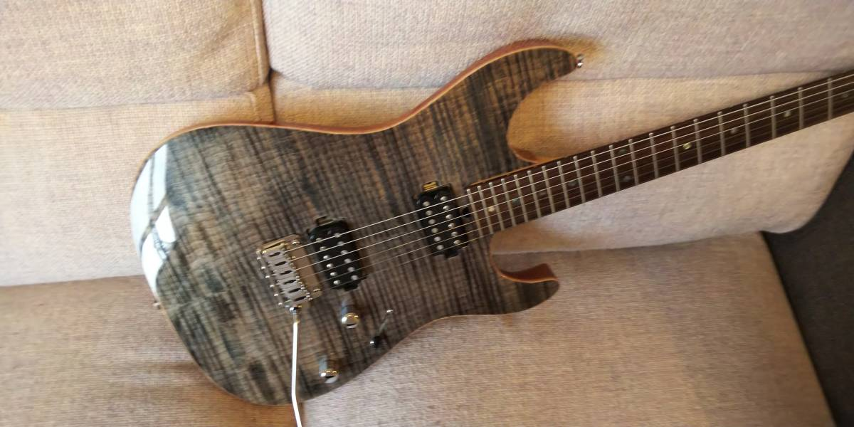 T's Guitars DST-DX 22fret 【USED】エレキギター)_画像2