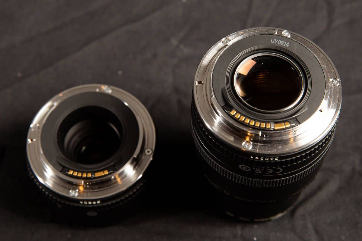 【美品】Canon EF50mm F2.5 コンパクトマクロ + ライフサイズコンバーター EF フィルター付 キヤノン COMPACT-MACRO_画像4