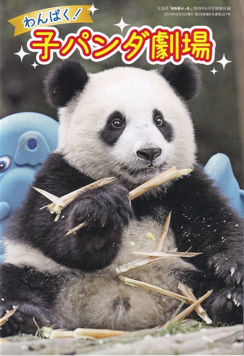 田舎暮らしの本 2019年6月号付録★わんぱく! 子パンダ劇場