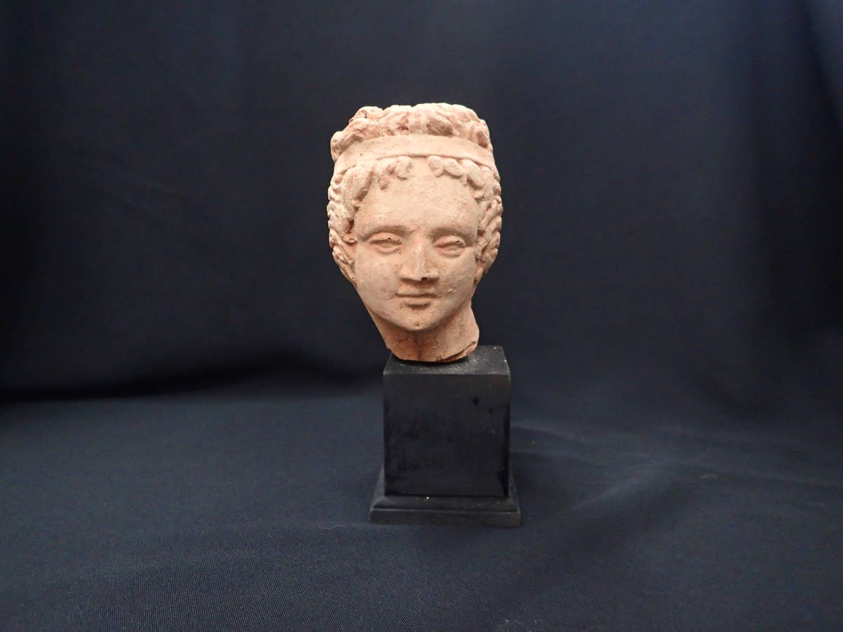 ガンダーラ テラコッタ ローマビーナス像頭部