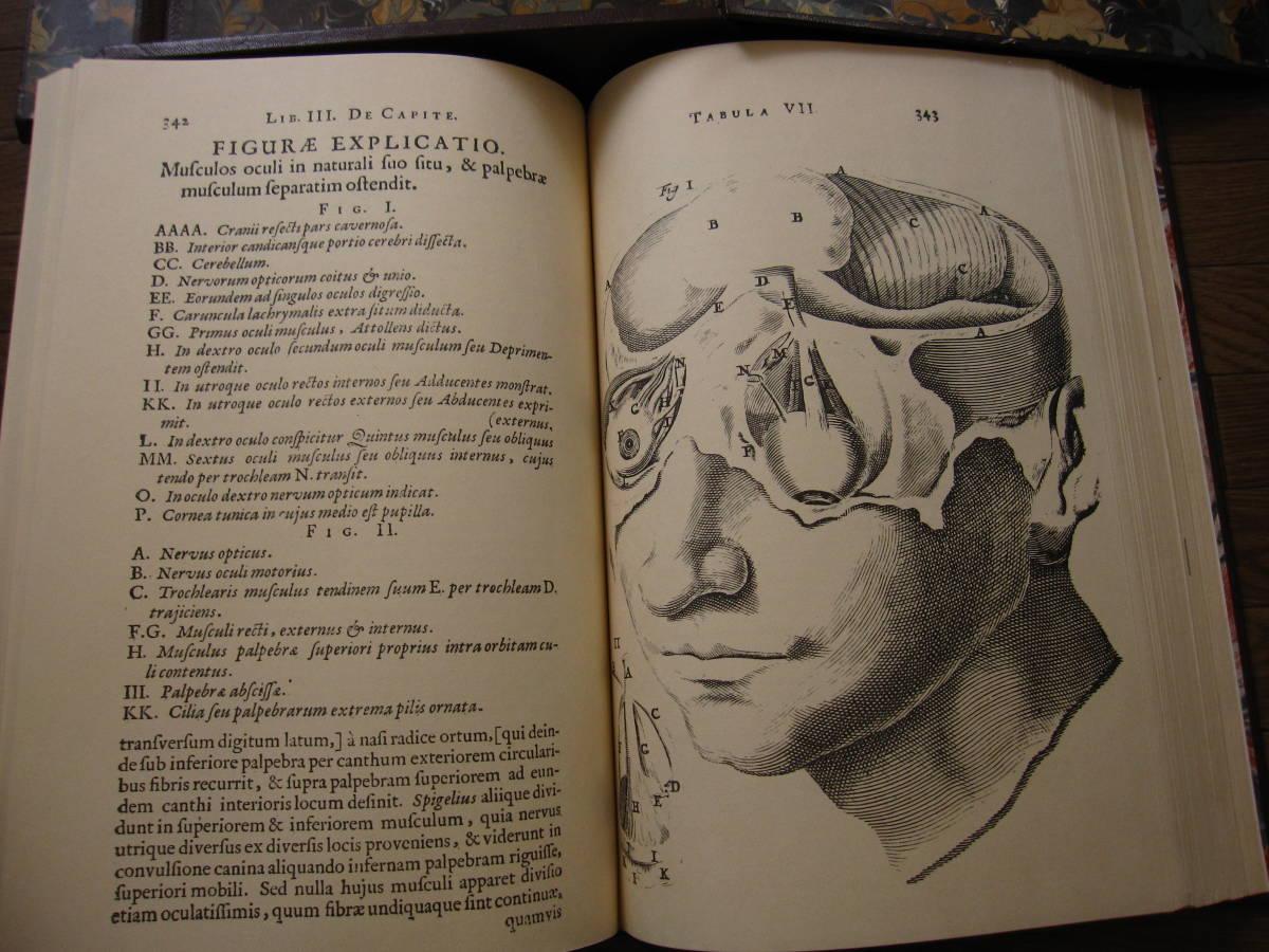 希少本 Anatomia Reformata アナトミア・リフォルマータ / 復刻版 17世紀人体解剖 銅版画集 / 限定500部・定価 58万円 / グロテスク _画像8