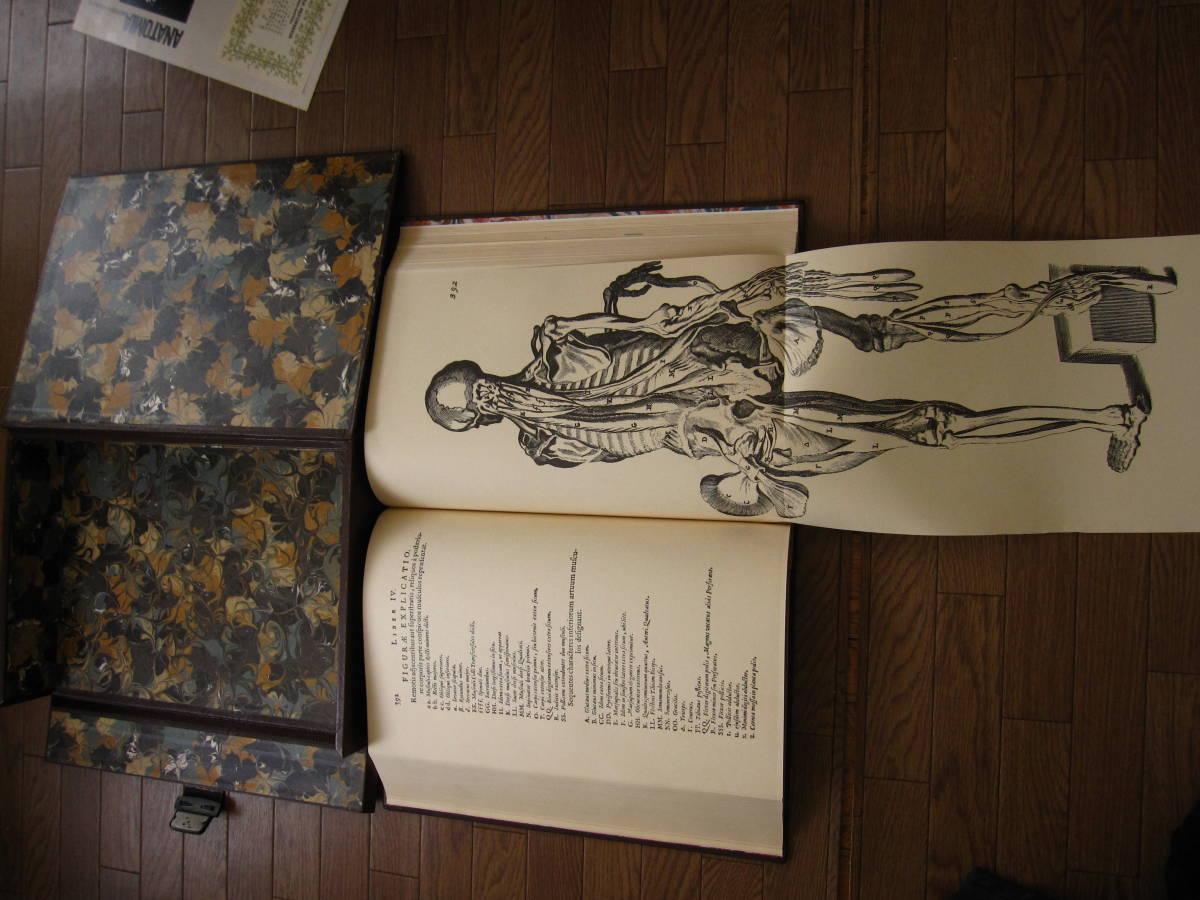 希少本 Anatomia Reformata アナトミア・リフォルマータ / 復刻版 17世紀人体解剖 銅版画集 / 限定500部・定価 58万円 / グロテスク _画像7