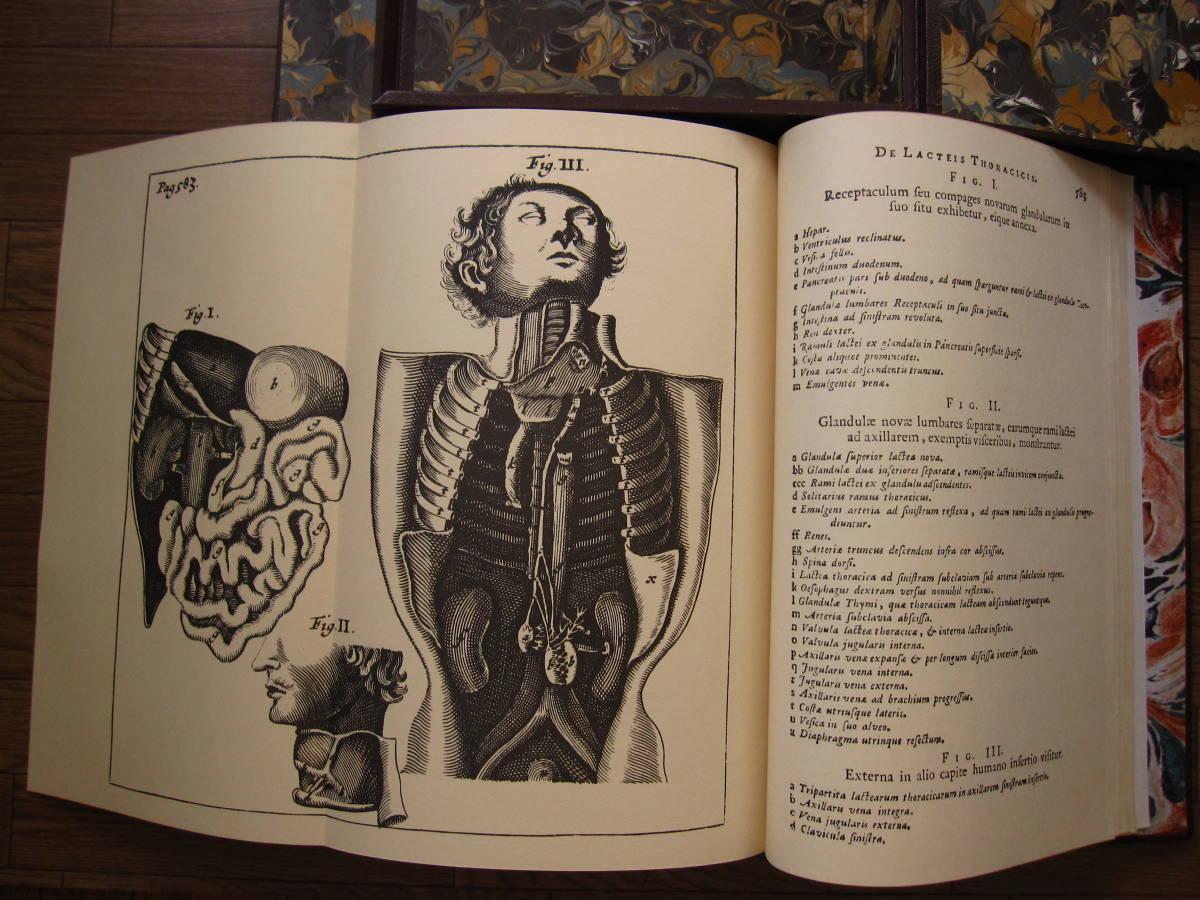 希少本 Anatomia Reformata アナトミア・リフォルマータ / 復刻版 17世紀人体解剖 銅版画集 / 限定500部・定価 58万円 / グロテスク _画像6