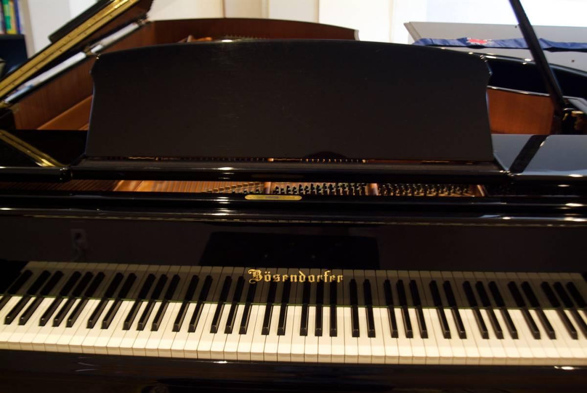 極良品・温かい美音 ベーゼンドルファー BOSENDORFER 225 1981年製 象牙鍵盤 状態極良好 オリジナル保存_画像9