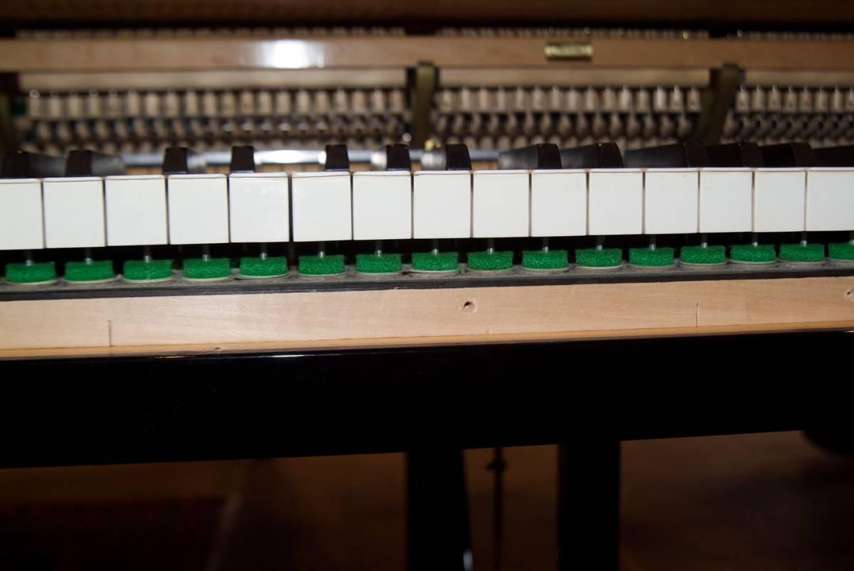 極良品・温かい美音 ベーゼンドルファー BOSENDORFER 225 1981年製 象牙鍵盤 状態極良好 オリジナル保存_画像8