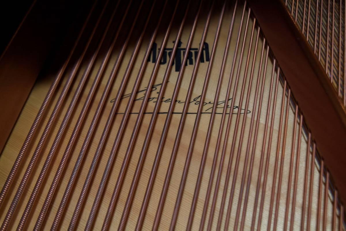 極良品・温かい美音 ベーゼンドルファー BOSENDORFER 225 1981年製 象牙鍵盤 状態極良好 オリジナル保存_画像5