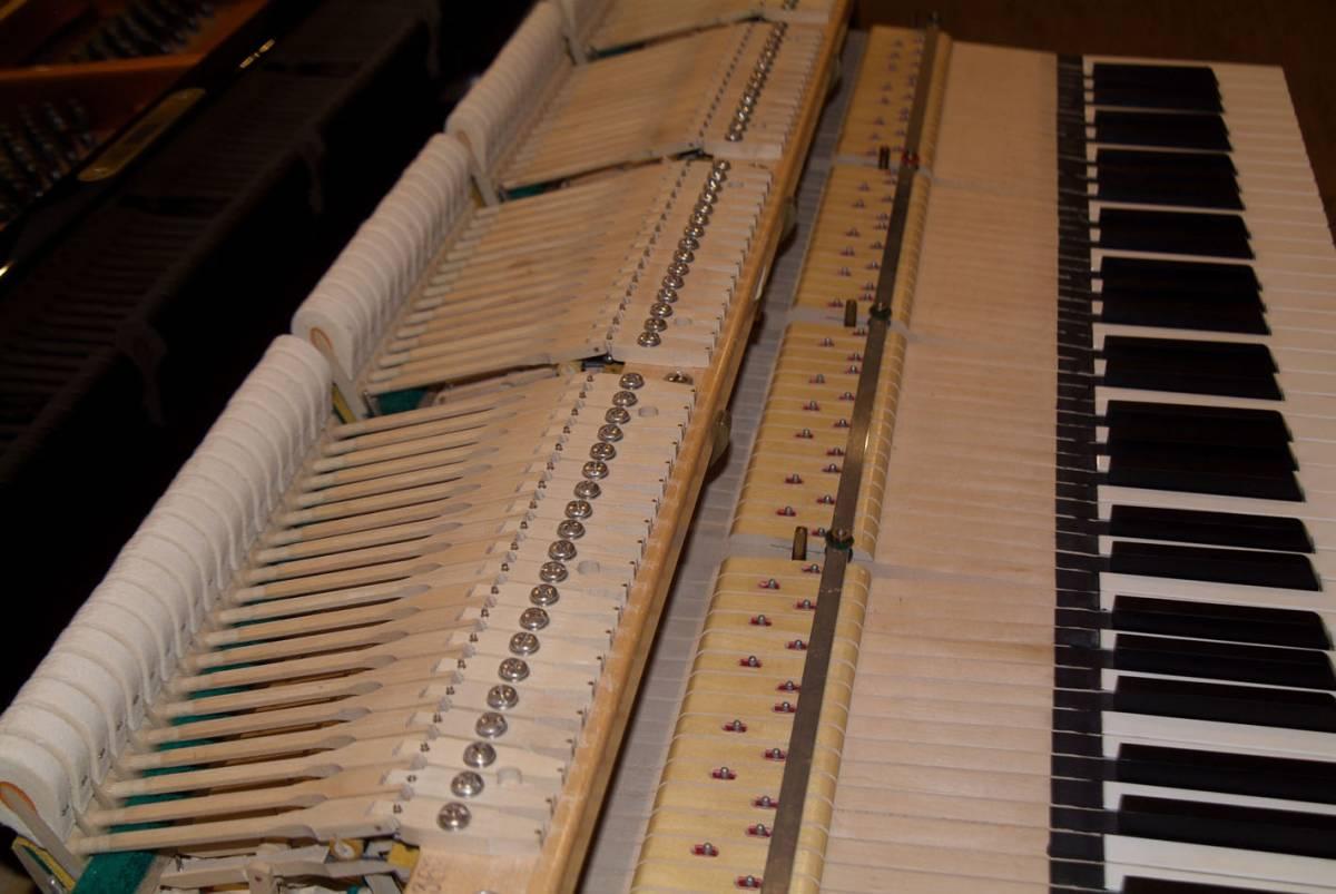 極良品・温かい美音 ベーゼンドルファー BOSENDORFER 225 1981年製 象牙鍵盤 状態極良好 オリジナル保存_画像7