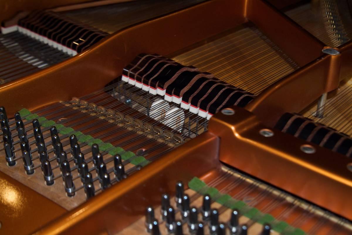 極良品・温かい美音 ベーゼンドルファー BOSENDORFER 225 1981年製 象牙鍵盤 状態極良好 オリジナル保存_画像6