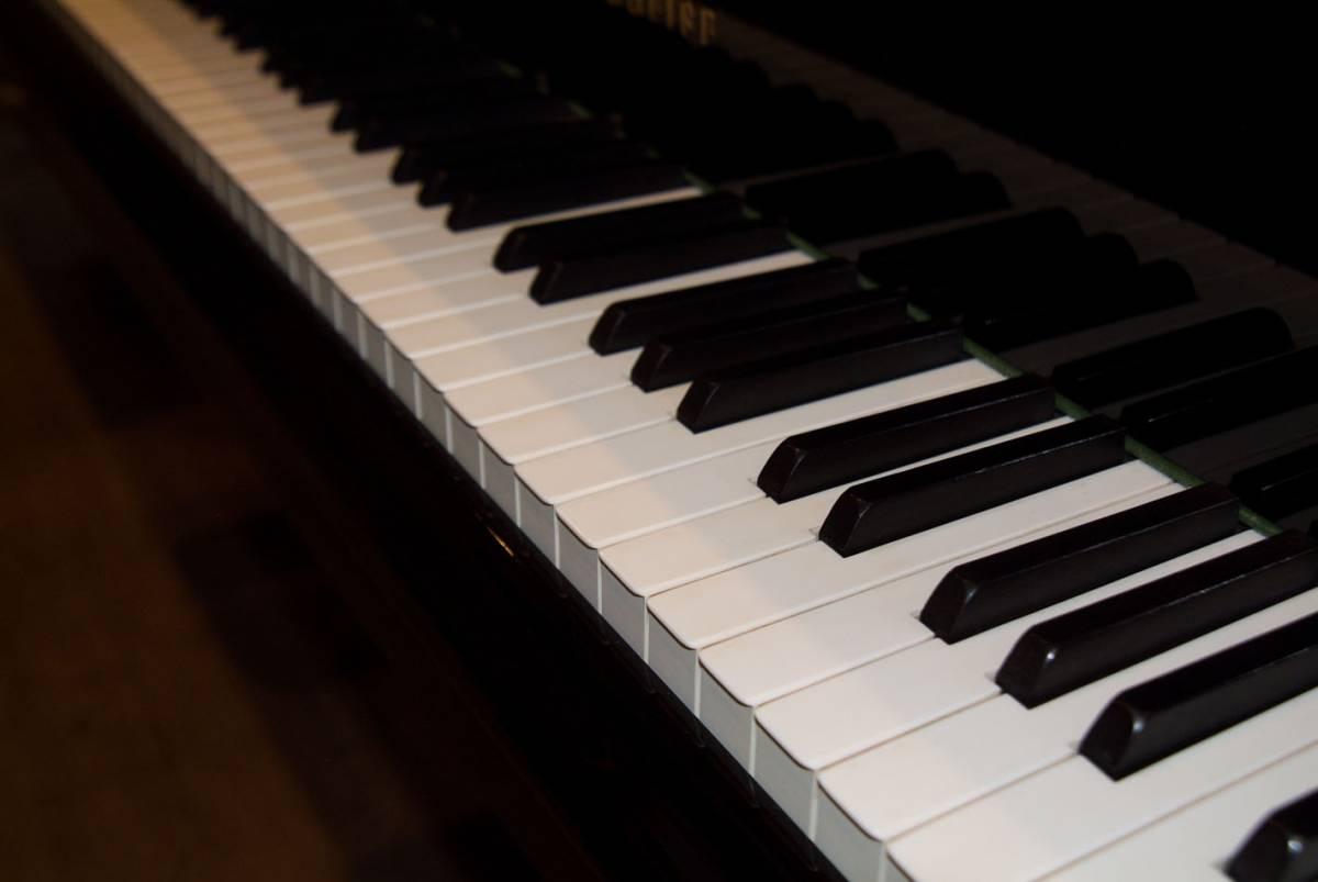 極良品・温かい美音 ベーゼンドルファー BOSENDORFER 225 1981年製 象牙鍵盤 状態極良好 オリジナル保存_画像2