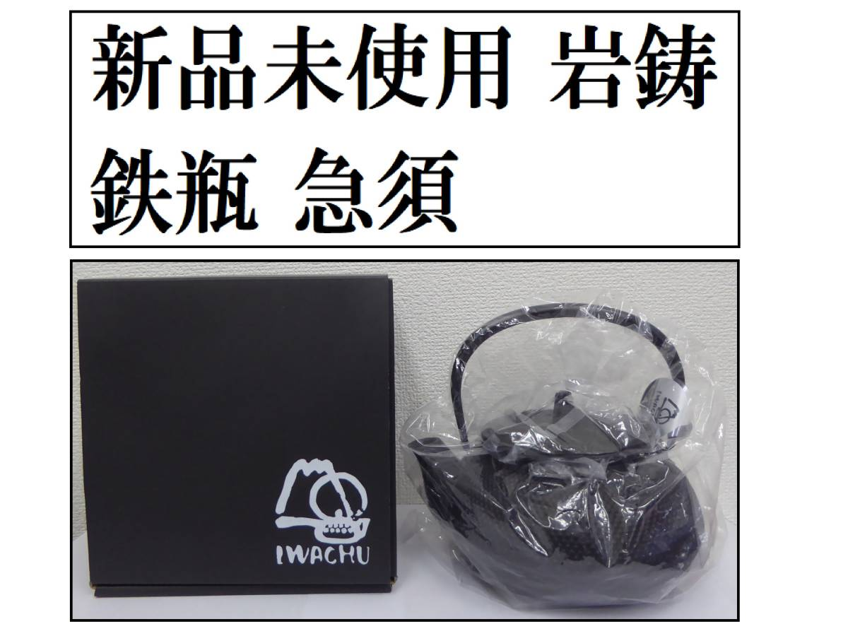 【新品未使用】【岩鋳 南部鉄器 鉄瓶 兼用 急須 5型】