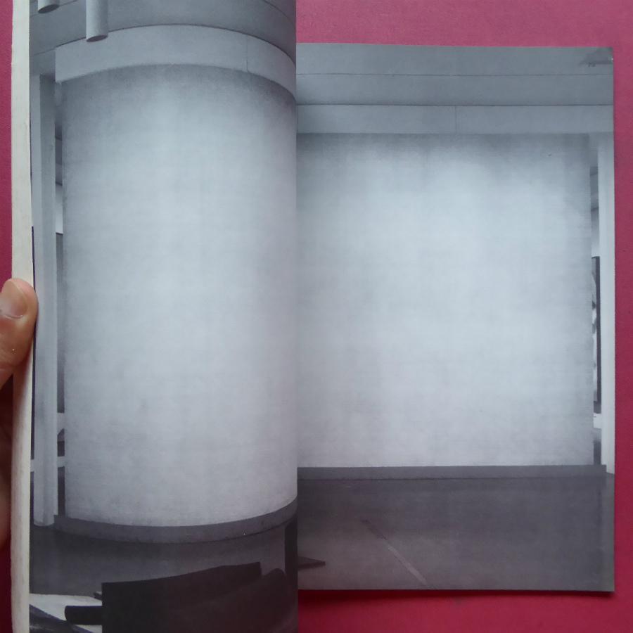 f3洋書図録【Drawing Now:The Museum of Modern Art New York/1976年】ジム・ダイン/ジャスパー・ジョーンズ/トゥオンブリー/ステラ_画像5