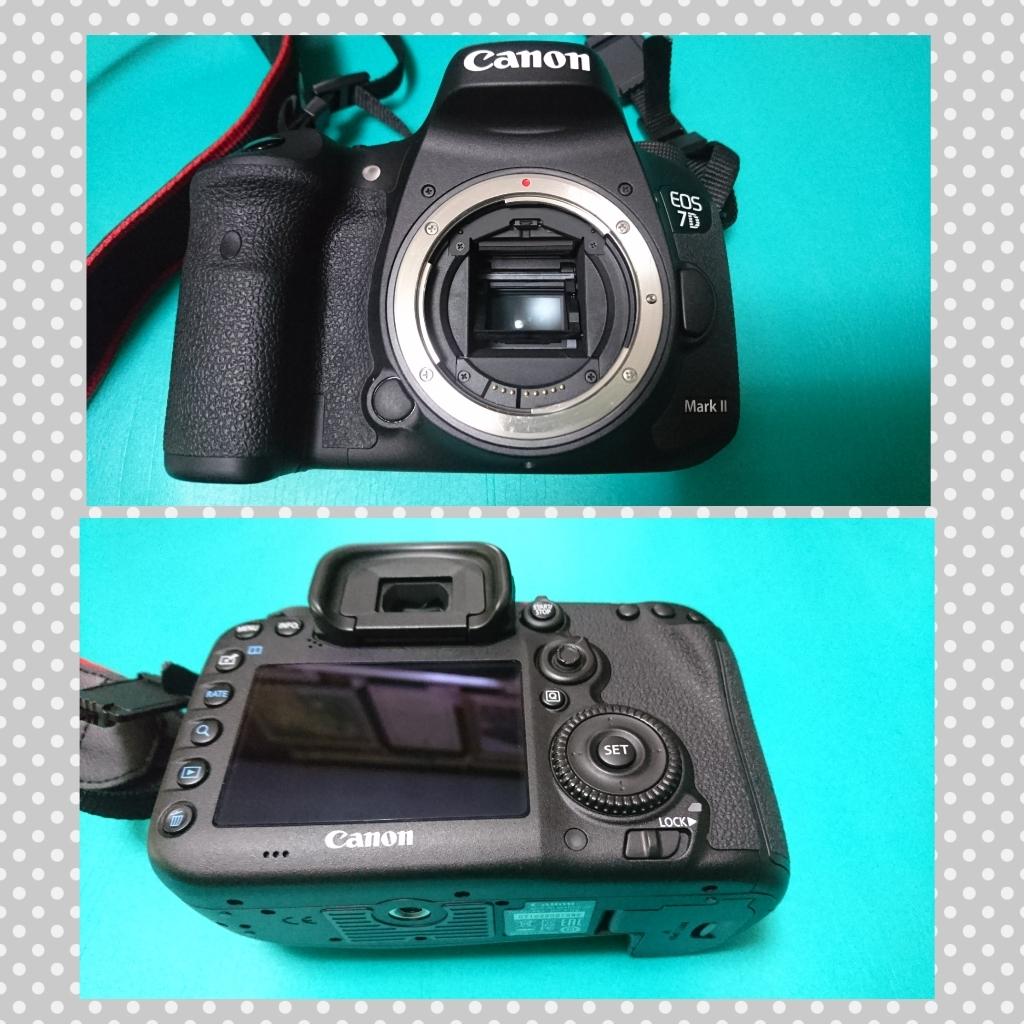 極美品【Canon/キャノン】EOS 7D Mark II (標準ズーム、マクロ、単焦レンズ)セット_画像2