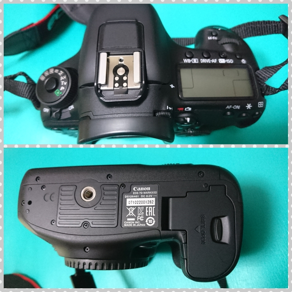 極美品【Canon/キャノン】EOS 7D Mark II (標準ズーム、マクロ、単焦レンズ)セット_画像3