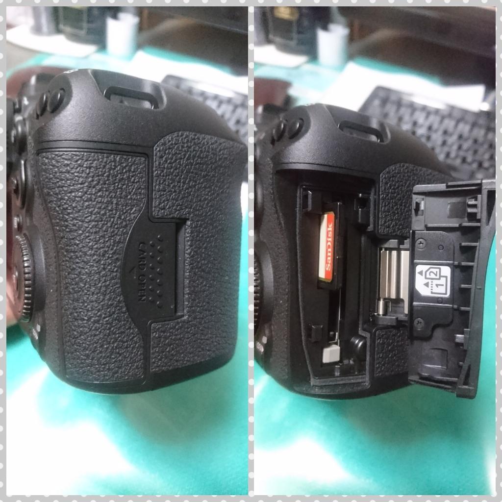 極美品【Canon/キャノン】EOS 7D Mark II (標準ズーム、マクロ、単焦レンズ)セット_画像4