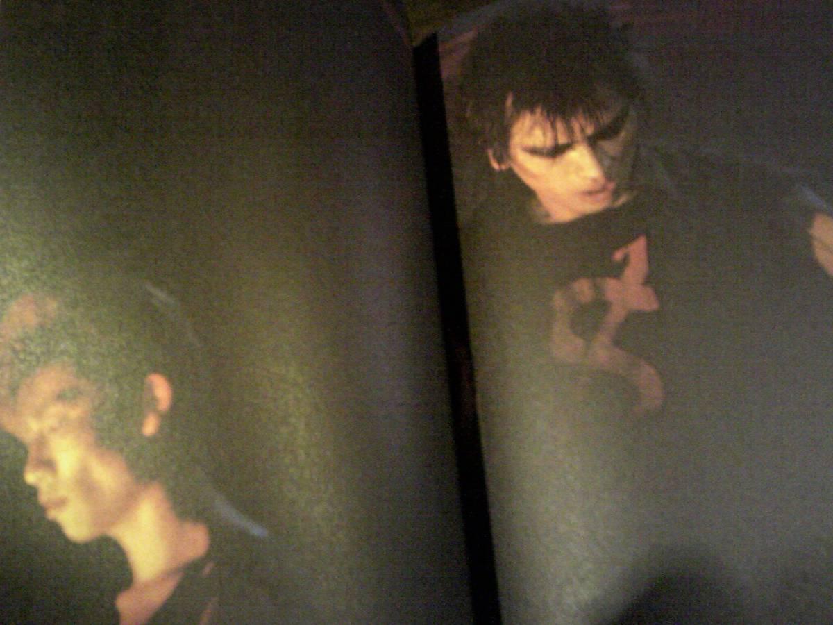 遠藤ミチロウ/エッセイ集/嫌ダッと言っても愛してやるさ!2003リミックス版/特別付録付DVD版YOUR ORDER!THE HIRTORY OF THE STALIN_画像2