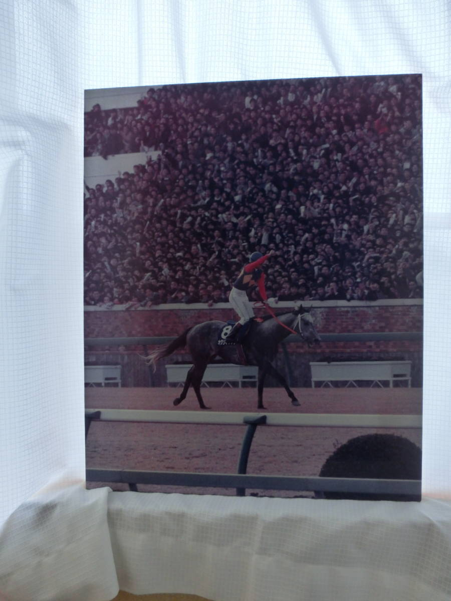 オグリキャップ第35回有馬記念「有終の美」ラストラン貴重パネル中日新聞(スポーツ)フォトサービス2枚組_画像8