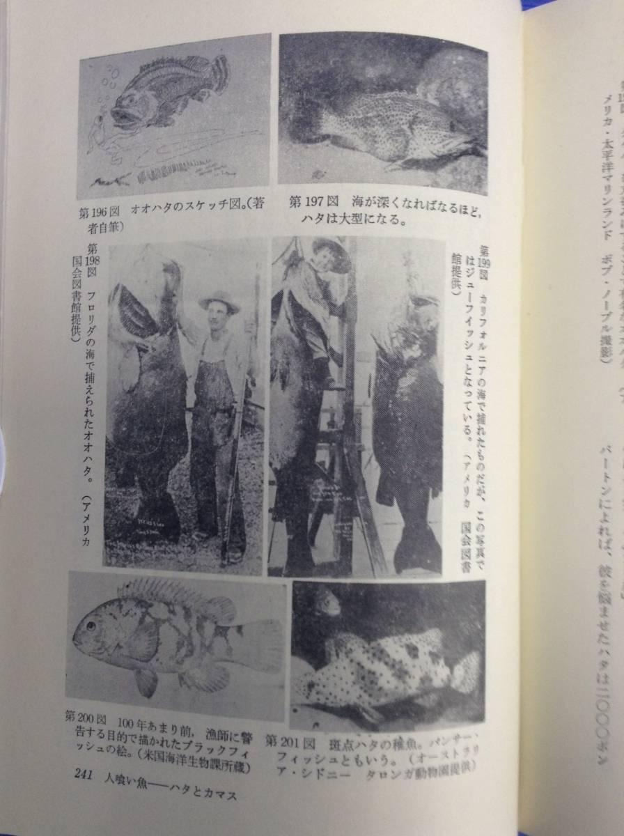 【図説・海の怪獣】 大陸書房 ジェイムズ・B・スィーニ 日夏響訳 昭和49_画像6