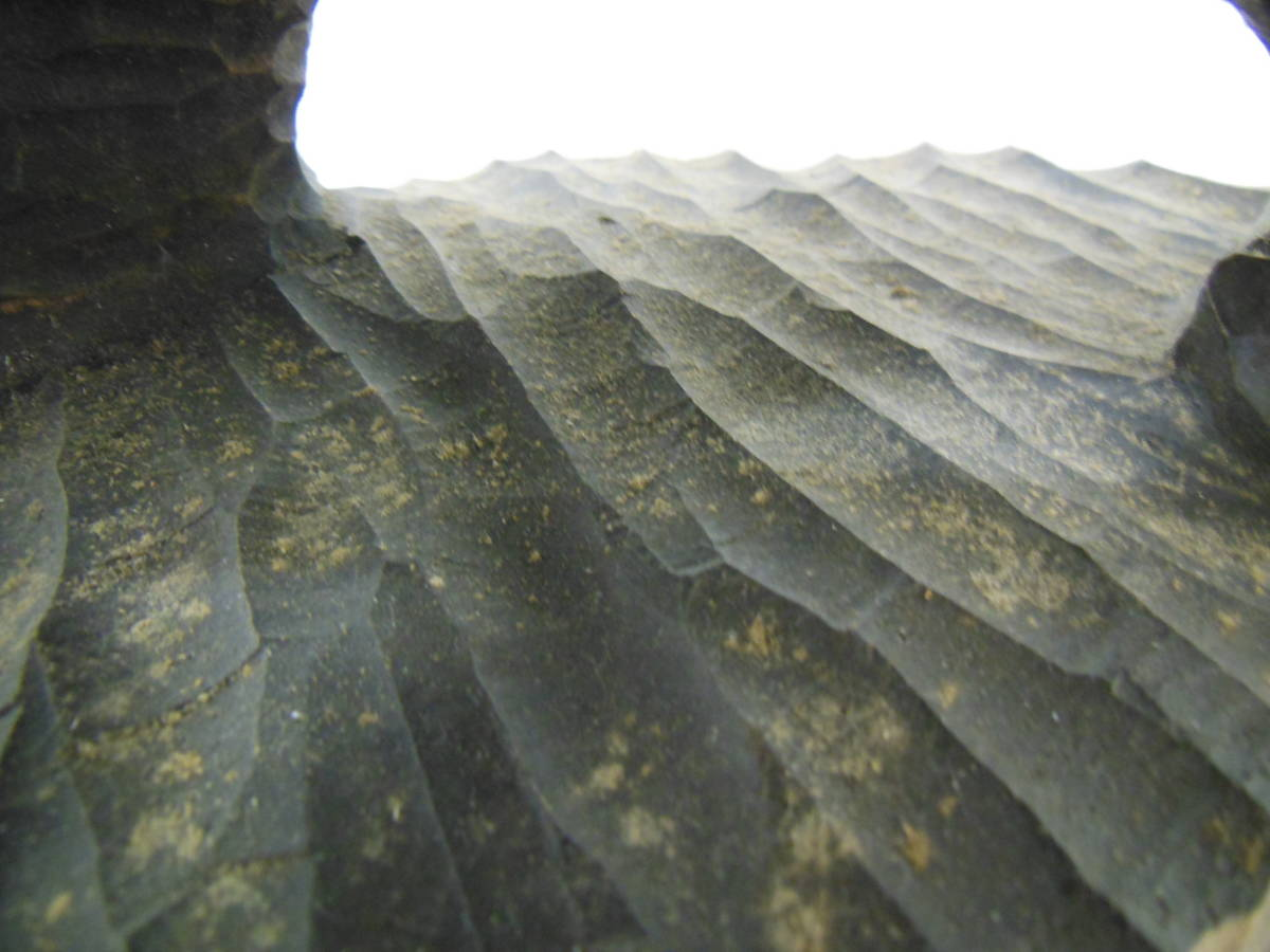 木彫り熊 彫刻 北海道民芸 アイヌ 八雲 工芸品 体長32cm アラキ作 作者 彫り _画像9
