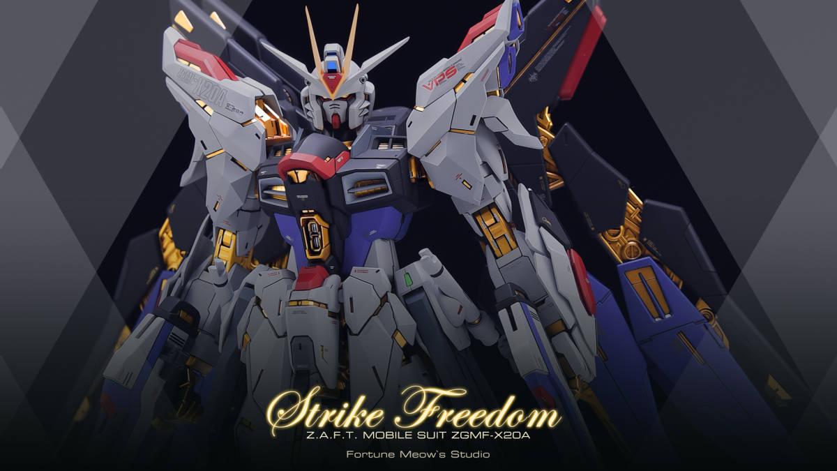 MG 1/100 ZGMF-X20A Strike Freedom Gundam 徹底改修塗装済み完成品 ガンダムSEED DESTINY