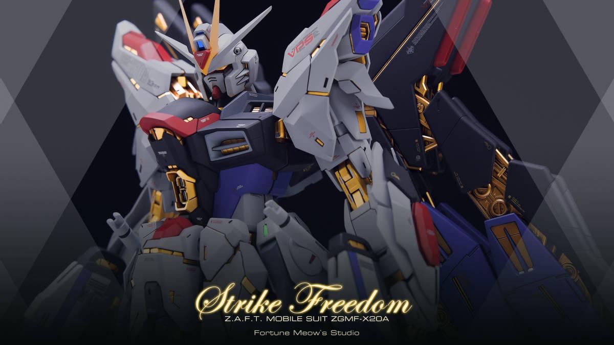 MG 1/100 ZGMF-X20A Strike Freedom Gundam 徹底改修塗装済み完成品 ガンダムSEED DESTINY_画像2