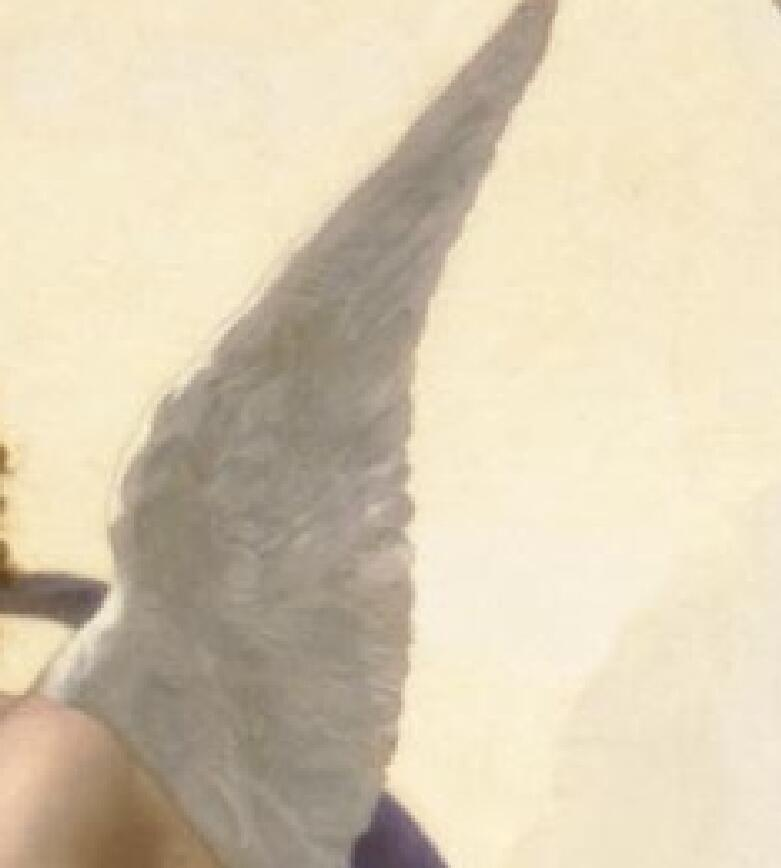 TL24作者不詳 西洋の油絵 美人画 裸婦 美術品絵画 油彩 ヌード 人物画 サイズ:50cm x 90cm_画像5