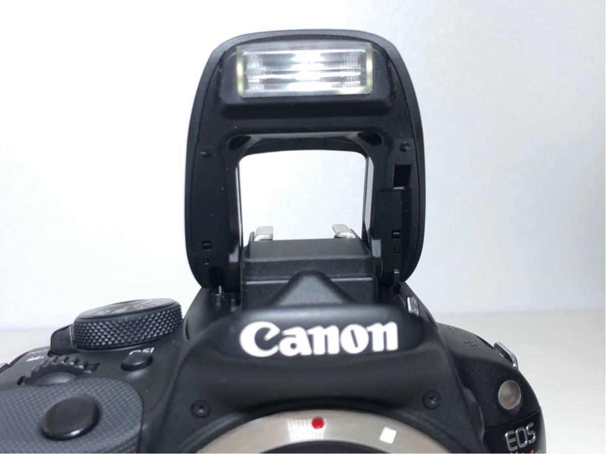 ◆美品◆キャノン Canon EOS KISS X7 ダブルレンズセット 元箱付き #6151_画像8