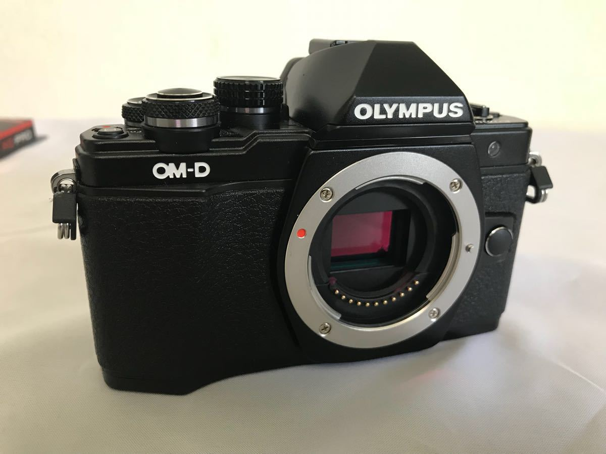 OLYMPUS E-m10 markⅱ ezレンズキット 多数オマケ付_画像7