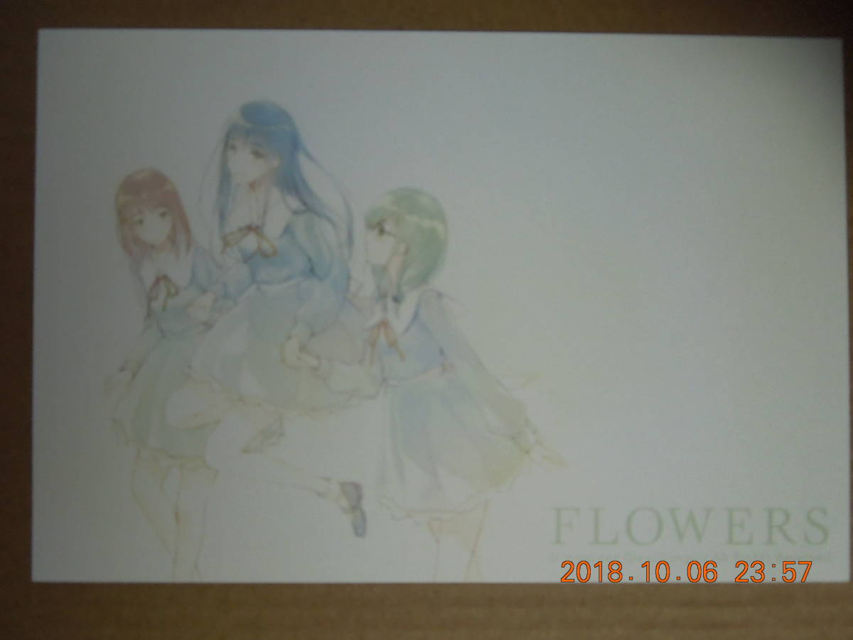 FLOWERS ポストカード / Innocent Grey 杉菜水姫 スギナミキ_画像1