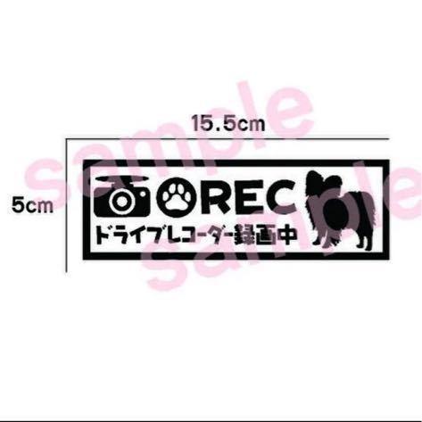 【送料無料】パピヨン ドラレコ ドライブレコーダー ステッカー 犬 車_画像1