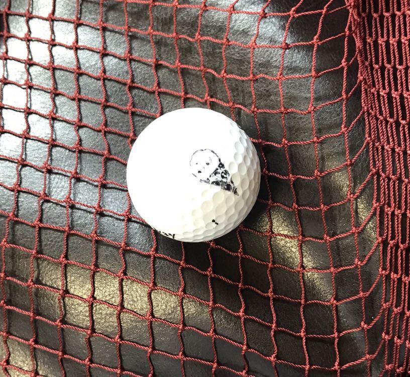 【漁網の価格破壊】新品 送料無料 網 漁網 魚網 ネット 多目的 防球ネット 獣害ネット 漁師 漁船 動物 漁具 インテリア ゴルフ 野球ネット_画像6