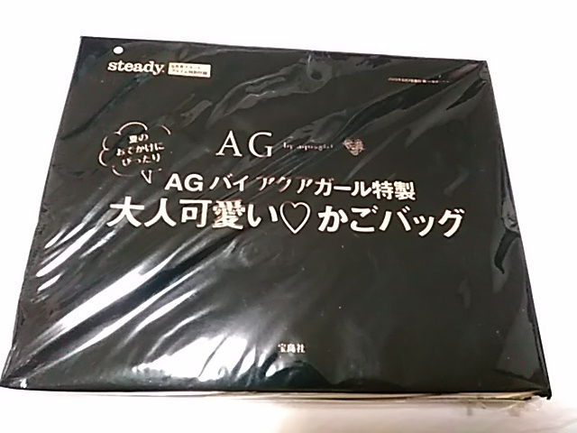 雑誌付録 steady. 6月号 AG by aquagirl 大人可愛い・かごバッグ