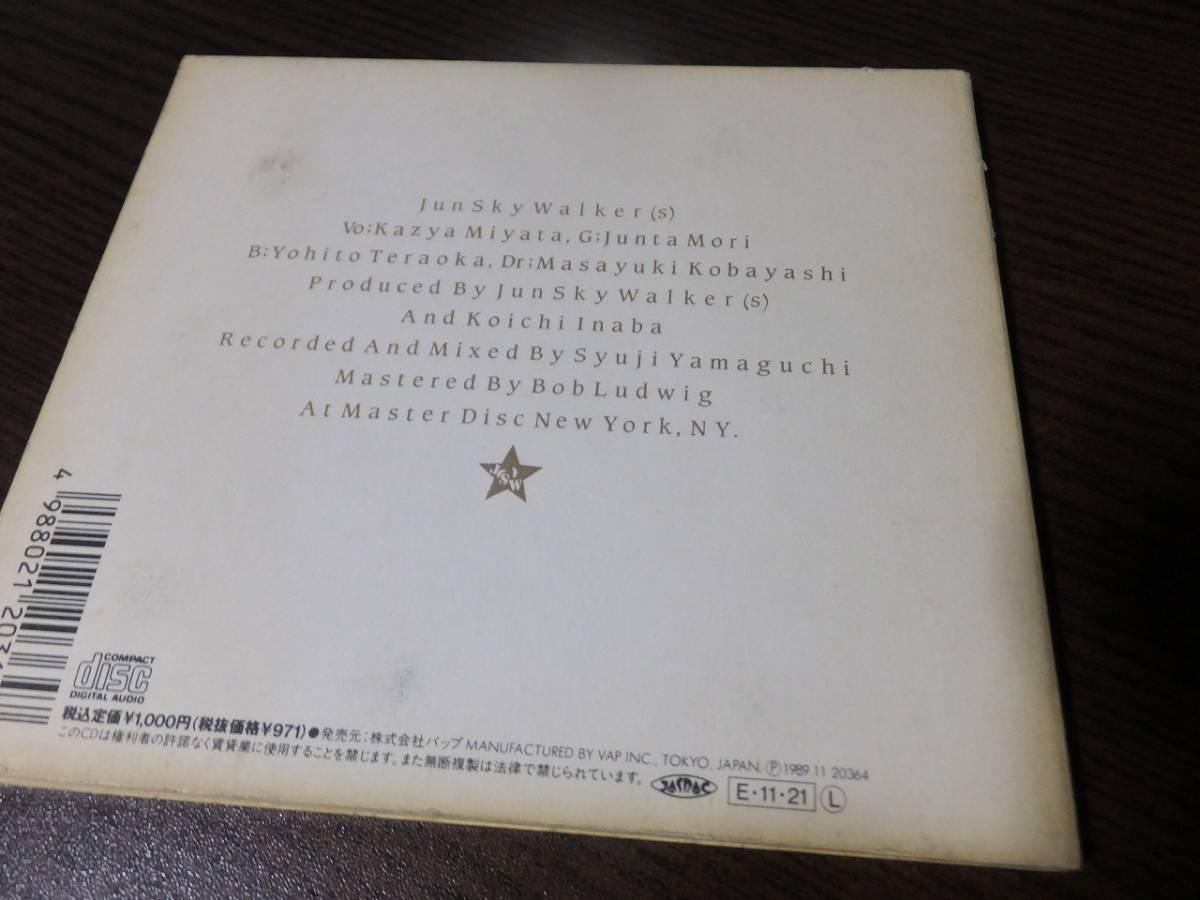 ジュン・スカイ・ウォーカーズ / 白いクリスマス ♪_画像3