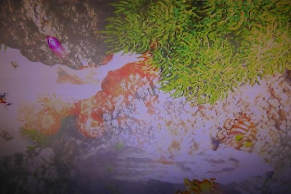 基板208: 虫姫さまふたり CAVE 動作確認済み_画像9