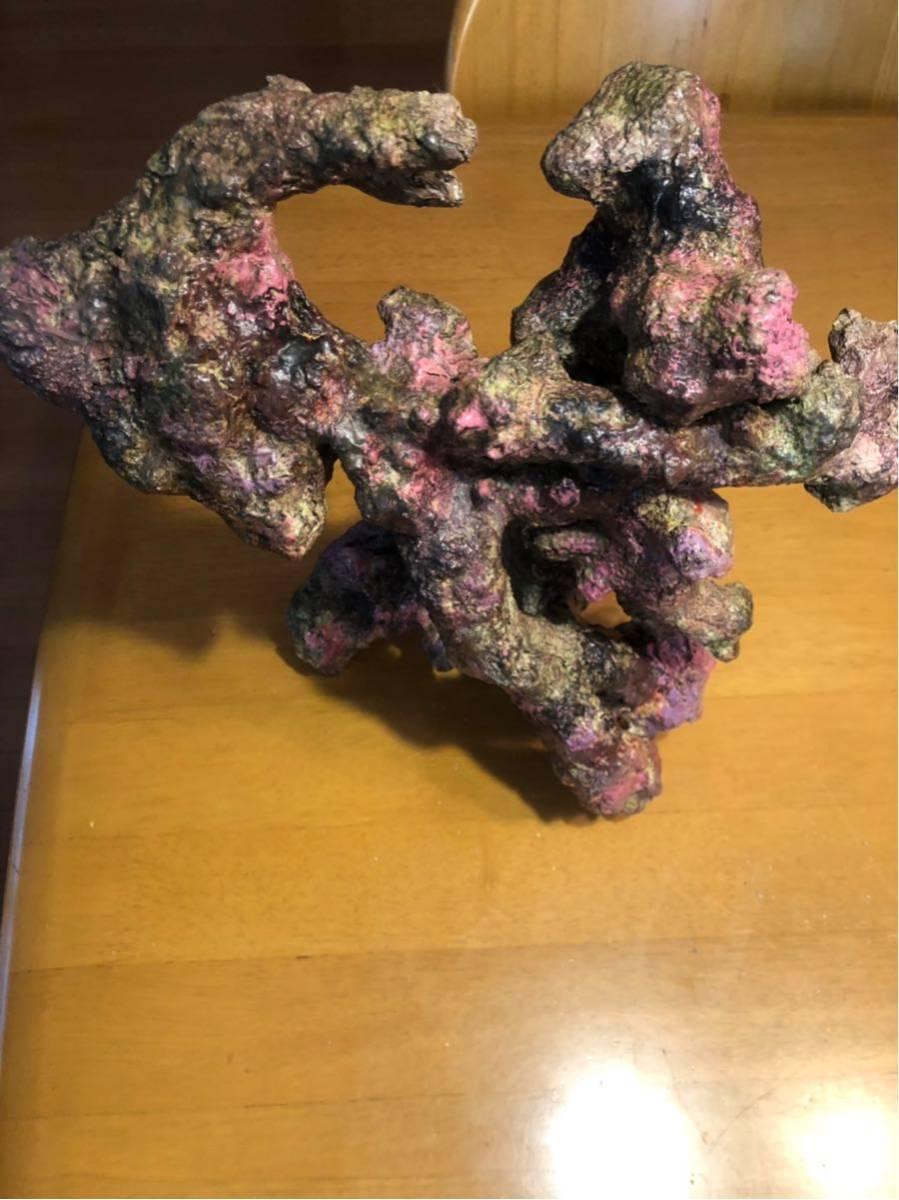 レプリカ ライブロック モジュール C レッドシー 海水魚