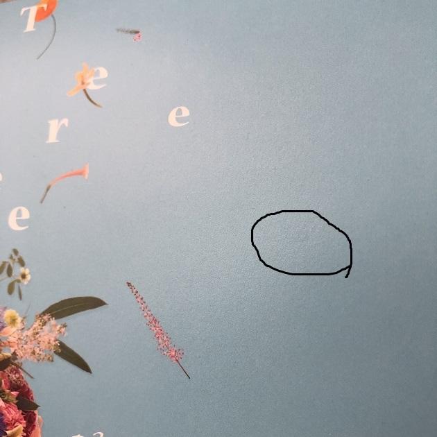 フローラルブレンドハーブティー×3包、コースター×2枚★ビースリー★B-Three20th anniversary★日比谷花壇★B-Three×HIBIYA-KADAN★_シミがあります。