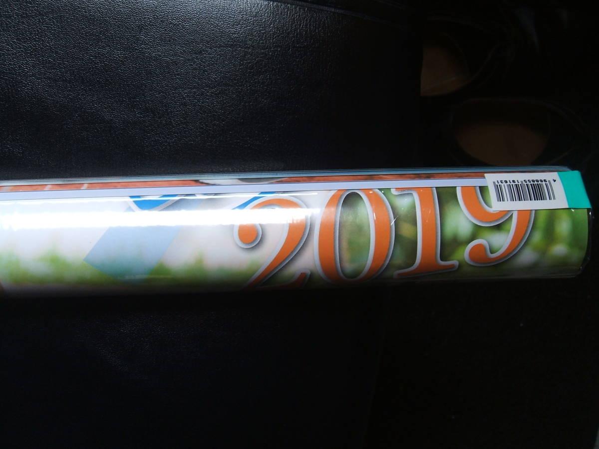 ☆新品!川崎あや2019年カレンダー☆