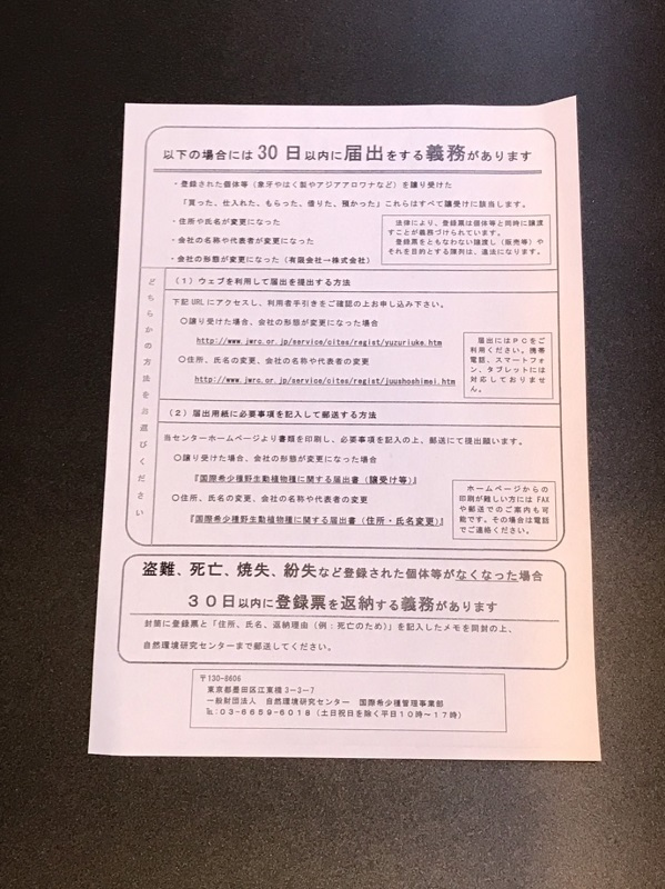 【下取1円スタート】金龍 MerLion Royal ULTIMATE_画像7