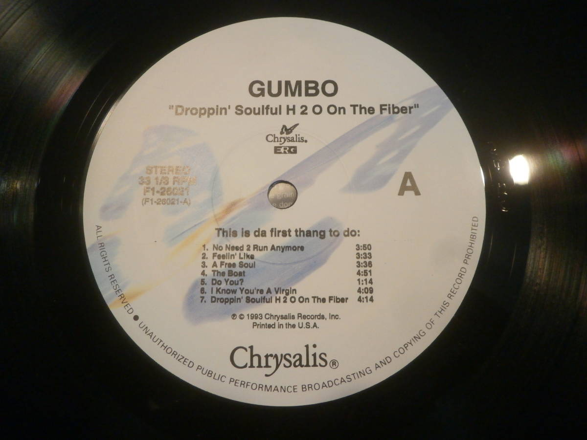 GUMBO / DROPPING SOULFUL H2O ON THE FIBER /LP/A FREE SOUL/ARRESTED DEVELOPMENT/フリーソウル _画像6