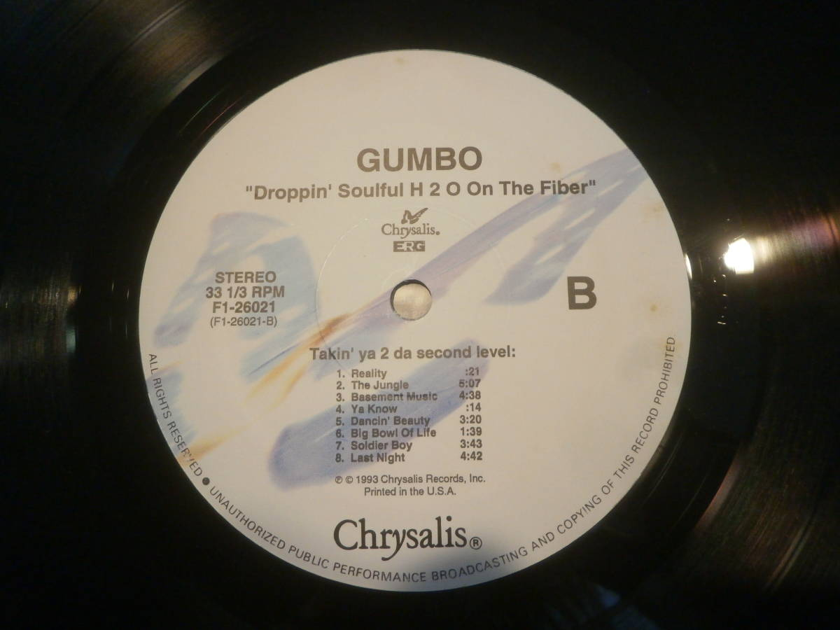 GUMBO / DROPPING SOULFUL H2O ON THE FIBER /LP/A FREE SOUL/ARRESTED DEVELOPMENT/フリーソウル _画像7