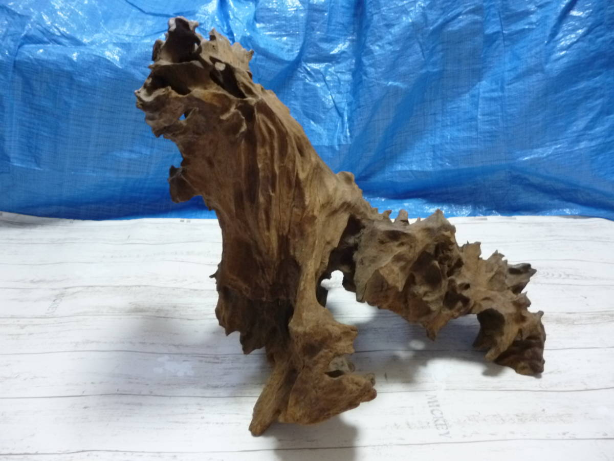 流木 大き目 H50×W60×D46 cm 。