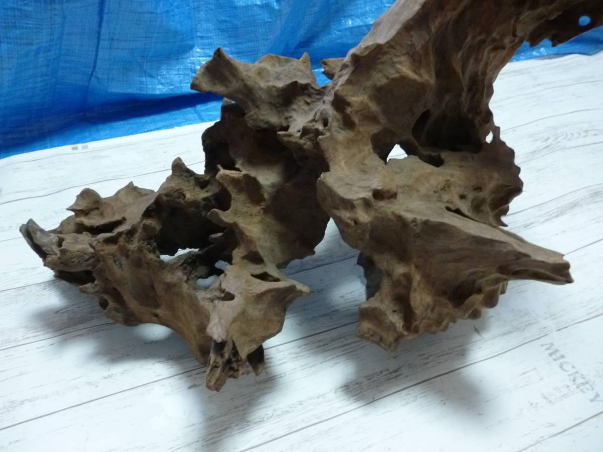 流木 大き目 H50×W60×D46 cm 。_画像3