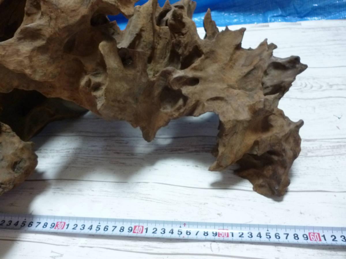 流木 大き目 H50×W60×D46 cm 。_画像6